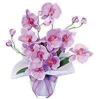 ホットファレノ (造花) 高さ35cm 光触媒 (68A25)