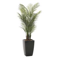 アーバンアレカパーム (人工観葉植物) 高さ170cm 光触媒 (716A580)