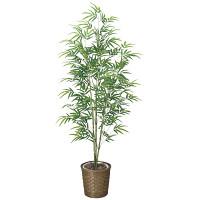 【送料無料】青竹 (人工観葉植物) 高さ170cm 光触媒 (778E300)