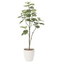 【送料無料】ウンベラータツリー (人工観葉植物) 高さ180cm 光触媒 (805A430)