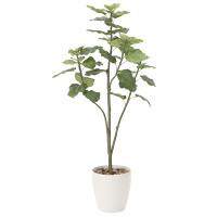 【送料無料】ウンベラータツリー (人工観葉植物) 高さ150cm 光触媒 (806A300)