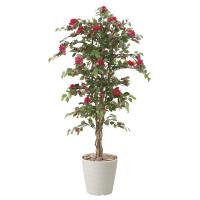 【送料無料】ブーゲンビリア (人工観葉植物) 高さ180cm 光触媒 (810A780)