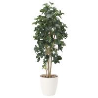 【送料無料】シェフレラ (人工観葉植物) 高さ180cm 光触媒 (812A400)