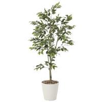 【送料無料】フィカスツリー (人工観葉植物) 高さ150cm 光触媒 (823A300)