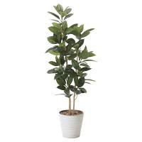 【送料無料】ゴムの木 (人工観葉植物) 高さ160cm 光触媒 (824A320)