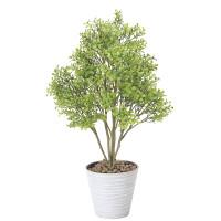【送料無料】ボックスウッド (人工観葉植物) 高さ70cm 光触媒 (831A100)