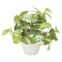 マーブルポトス (人工観葉植物) 高さ25cm 光触媒機能付 (836G35)