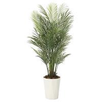 【送料無料】【2020年新商品】アレカパーム1.7(ポリ製) (人工観葉植物) 高さ170cm 光触媒機能付 (2006A400)
