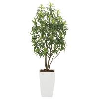 【送料無料】【2020年新商品】フレッシュドラセナW1.8 (人工観葉植物) 高さ180cm 光触媒機能付 (2007A800)