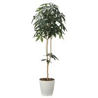 【送料無料】【2020年新商品】デザインパキラ1.8 (人工観葉植物) 高さ180cm 光触媒機能付 (2009A300)