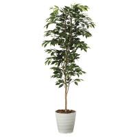 【送料無料】【2020年新商品】ベンジャミン1.8 (人工観葉植物) 高さ180cm 光触媒機能付 (2014A300)