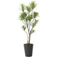 【送料無料】【2020年新商品】フレッシュドラセナ1.8 (人工観葉植物) 高さ180cm 光触媒機能付 (2016A380)