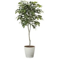 【送料無料】【2020年新商品】コーヒーツリー1.8 (人工観葉植物) 高さ180cm 光触媒機能付 (2020A580)