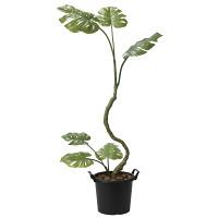 【送料無料】【2020年新商品】インテリアモンステラ1.7 (人工観葉植物) 高さ170cm 光触媒機能付 (2025A250)