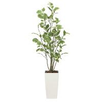 【送料無料】【2020年新商品】ポリシャス1.3 (人工観葉植物) 高さ130cm 光触媒機能付 (2030A200)