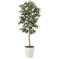 【送料無料】【2020年新商品】アルデシア(万両)1.3 (人工観葉植物) 高さ130cm 光触媒機能付 (2033A200)