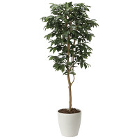 【送料無料】【2020年新商品】アルデシア(万両)1.6 (人工観葉植物) 高さ160cm 光触媒機能付 (2034A300)