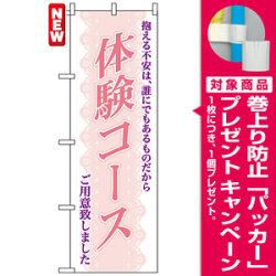 のぼり旗 (7560) 体験コース [プレゼント付]