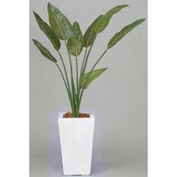【送料無料】ストレチア 1.2 (人工観葉植物) 高さ120cm 光触媒機能付 (132E330)