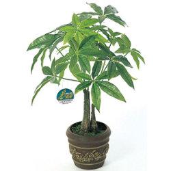 パキラポットM (人工観葉植物) 高さ41cm 光触媒機能付 (252E40)