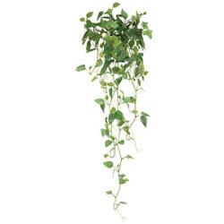 壁掛フィロ (人工観葉植物) 高さ68cm 光触媒 (272B35)