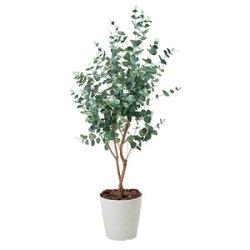 【送料無料】ユーカリ1.25 (人工観葉植物) 高さ125cm 光触媒機能付 (370A180)