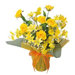 サンシルク (造花) 高さ45cm 光触媒 (57A40)