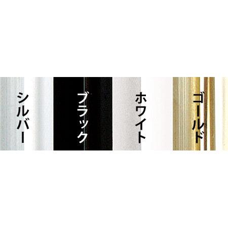 ■アルミフレーム アモット カラーバリエーション