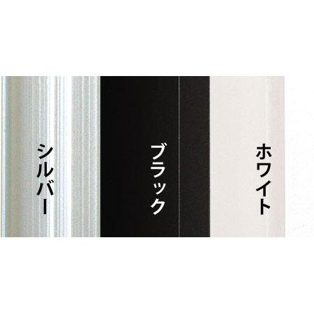 ■オストレッチ フレームカラーバリエーション