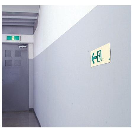 ■使用例/路誘導標識(蓄光)