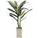 【2019年新商品】【送料無料】ヘリコニア 2.0 (造花) 高さ200cm 光触媒 (123F850)