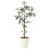 【2019年新商品】【送料無料】オリーブ1.3 (造花) 高さ130cm 光触媒 (909A200)