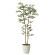 【送料無料】トネリコ (人工観葉植物) 高さ160cm 光触媒 (603A320)