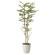 【送料無料】ゴールデンリーフ (人工観葉植物) 高さ160cm 光触媒 (605A310)