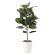 【送料無料】ゴムの木90 (人工観葉植物) 高さ90cm 光触媒 (614E130)