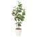 【送料無料】シーグレープ (人工観葉植物) 高さ120cm 光触媒 (870A150)