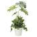 【送料無料】スプリット 植栽付 (人工観葉植物) 高さ90cm 光触媒 (871A170)