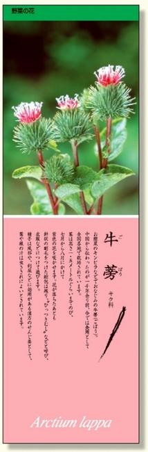 シールギャラリー ごぼう (安全用品・標識/安全標識/環境美化標識)