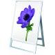 ポスター用スタンド看板 マグネジ A1 シルバー/ホワイト 片面 (PSSKMN-A1KW)