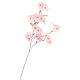 スプレイ シルク桜