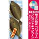 のぼり旗 ヒラメ 絵旗 (21586) [プレゼント付]
