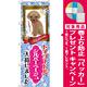 のぼり旗 トイプードル シルバーベージュ 入荷 (GNB-2460) [プレゼント付]