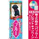 のぼり旗 トイプードル ブルー 入荷 (GNB-2463) [プレゼント付]