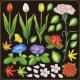 花(チューリップ・朝顔など) 看板・ボード用イラストシール (W285×H285mm)