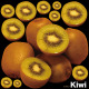 キウイ 看板・ボード用イラストシール (W285×H285mm)