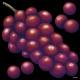 デコシール 赤葡萄 サイズ:レギュラー W285×H285 (61955)
