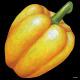 デコシール パプリカ(黄色) サイズ:ミニ W100×H100 (62037)