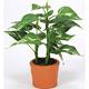カントリーポトス (人工観葉植物) 高さ17cm 光触媒 (263A10)