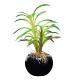カクタスインポット (人工観葉植物) 高さ20cm 光触媒 (521A25)