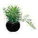 ミックスインポット (人工観葉植物) 高さ15cm 光触媒 (522A25)